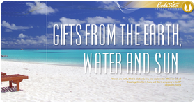 Gifts from the earth, water and sun